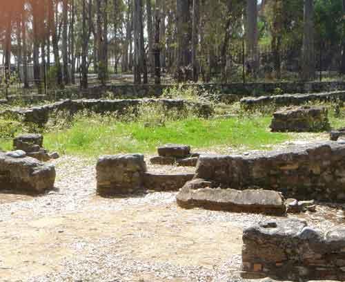 Basilica Vega Mar Hierbas